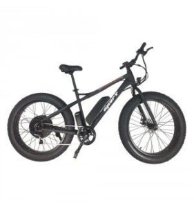 YesBike Sport Electric Mountain Bike